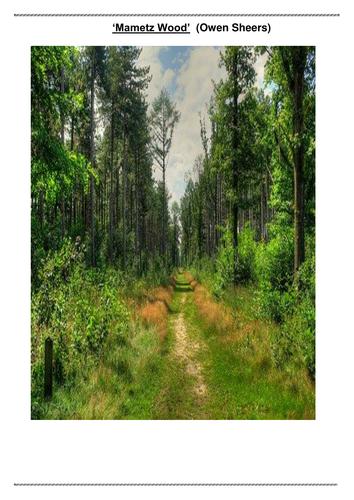 'Mametz Wood' Comprehension Questions