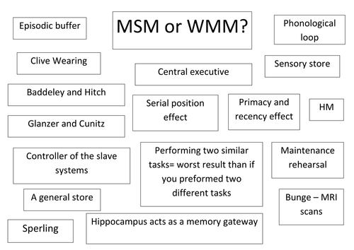 Paper 1 - Memory - colour the sentence which matches the MSM and WMM