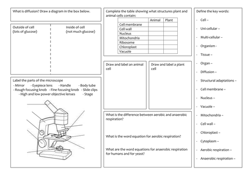 KS3 Cells and respiration revision mat by BLJohnson39 ...