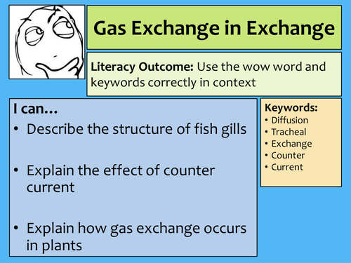 AQA AS Biology Gas exchange in fish and insects lecture notes