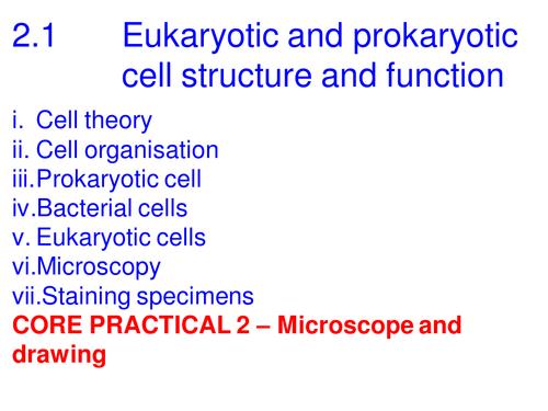 A Level Biology Edexcel B 2.1 CORE PRACTICAL - Microscopy