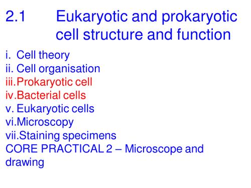 A level Biology Edexcel B .1 Eukaryota and Prokaryotic structure