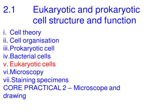 A level Biology Edexcel 2.1 Eukaryota cell structure