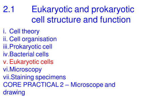 A level Biology Edexcel B 2.1 Protein transport