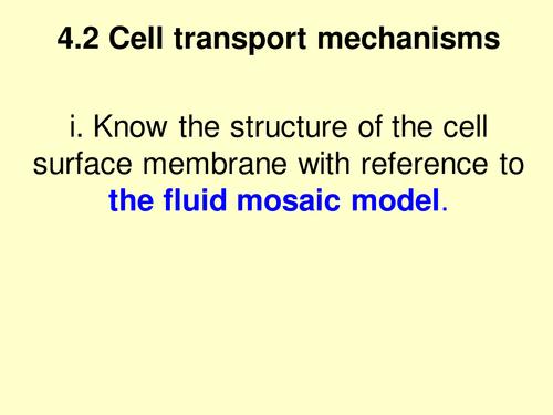 A level Biology Edexcel B 4.2 Fluid Mosaic Model