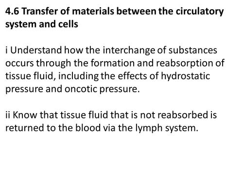 A level Biology Edexcel B 4.6 Tissue Fluid