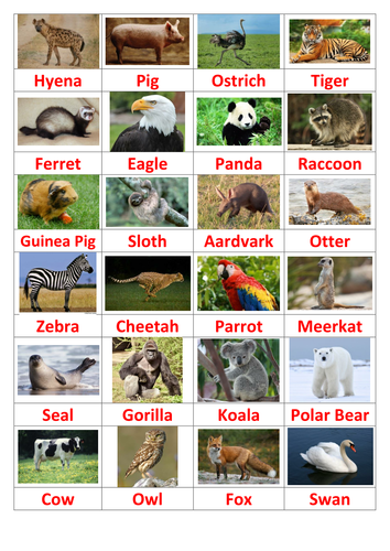 Kids Quiz - Name the Animal by maths_and_quizzes | Teaching Resources