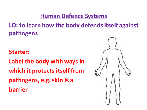 Human Defence Systems