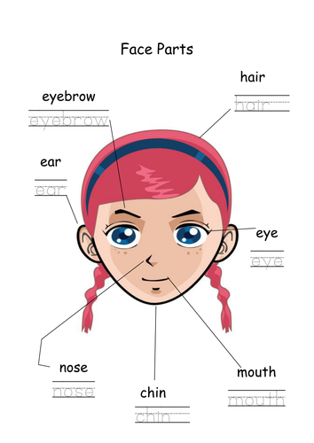 EAL Face and Body Parts Worksheets