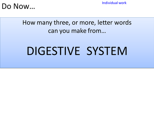 Enzymes in the digestive system