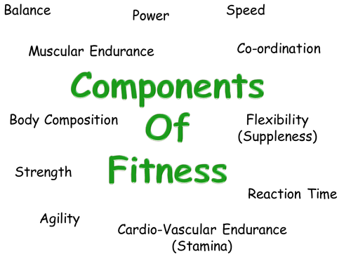 Components of fitness powerpoint
