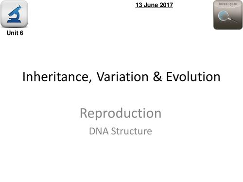 AQA Biology 4.6 - L1 DNA Structure