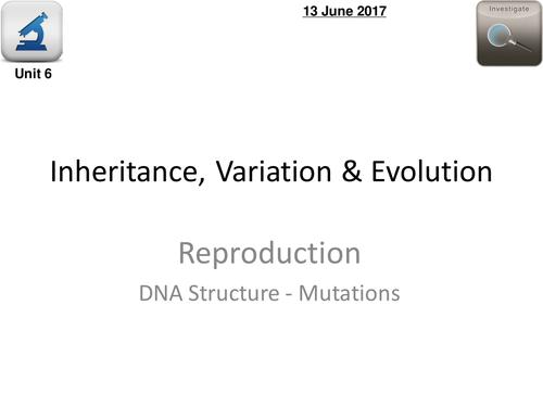 AQA Biology 4.6  –  L2 DNA Mutations