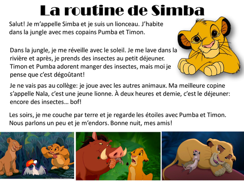 Daily routine: Simba's Day