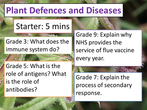 Plant Defences and Diseases