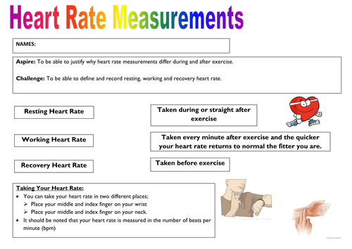 Heart rate worksheet