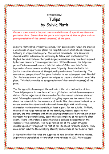 Critical Evaluation Essay Sample A Grade Higher English Level Critical Essay On Sylvia Plaths Poem   Essays About Patriotism also Satirical Essay On Abortion Higher English X Critical Essays On Philip Larkin And Sylvia Plath  Personal Response Essay