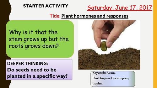 AQA new specification-Plant responses and using plant hormones-B11.9-B11.10