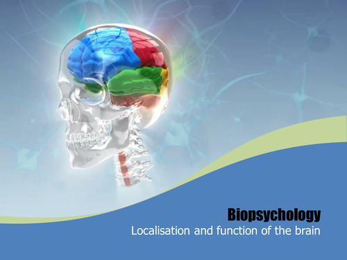 Biopsychology AQA 2015 (2nd year content) complete resource pack