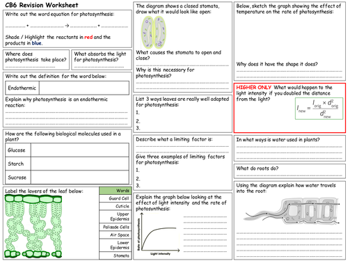 Edexcel CB6 Revision Worksheet by fosterpaul - Teaching Resources ...