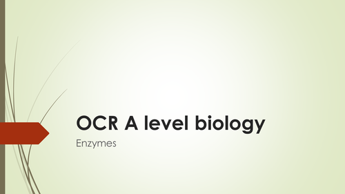 OCR A level biology: enzymes