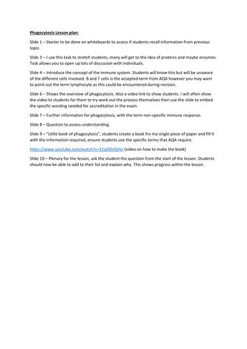 Phagocytosis Lesson. A Level Biology, AQA 7401/7402