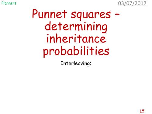 Determining genetic inheritances - punnet squares