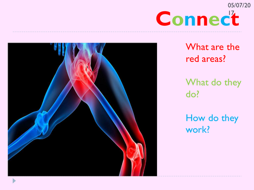 KS3 movements and joints lesson