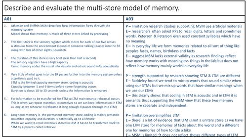 AQA AS Psychology Memory revision sheets