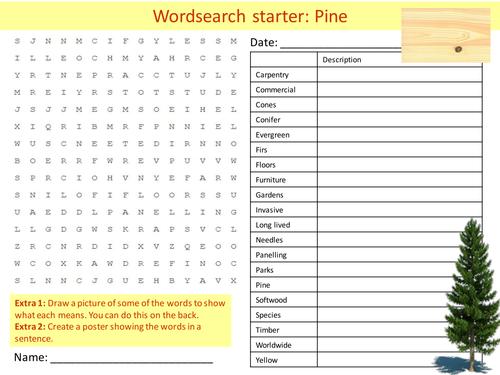 Design Technology Pine Wood Resistant Materials Starter Activities Wordsearch Anagrams Crossword