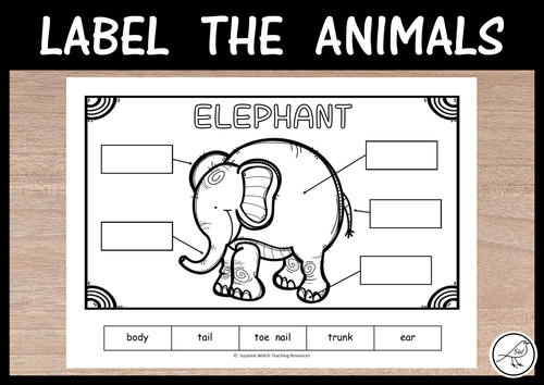 Label the Zoo Animals