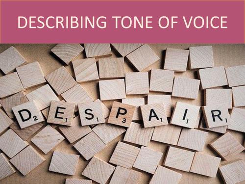 LANGUAGE TO DESCRIBE TONE OF VOICE