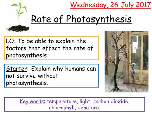 AQA 9-1 Biology Rates of Photosynthesis