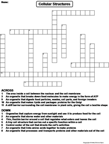 Cell Organelles Crossword Puzzle By Sciencespot Teaching