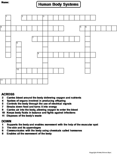 Human Body Systems Crossword Puzzle | Teaching Resources