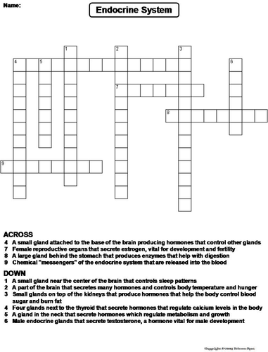 endocrine system crossword puzzle by sciencespot teaching resources tes. Black Bedroom Furniture Sets. Home Design Ideas