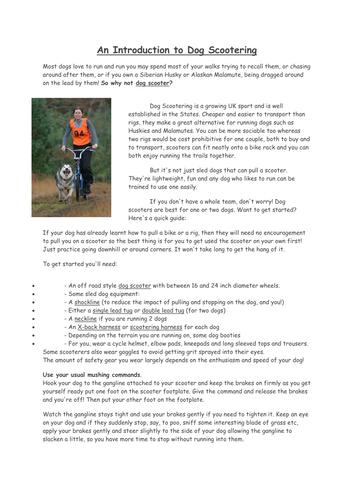 Writing to Advise lesson dog scootering theme. Writing skills GCSE and KS3 English