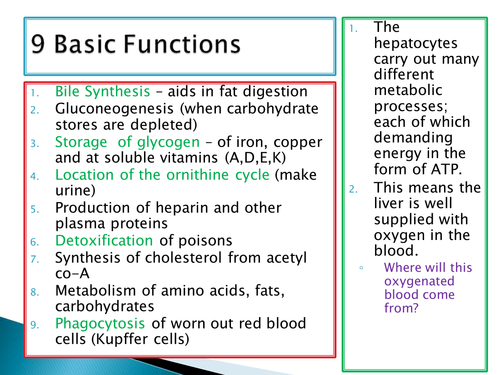 NEW SPEC - A level Biology - Module 5 - Comm & Excretion - Chapter 2 - Liver function