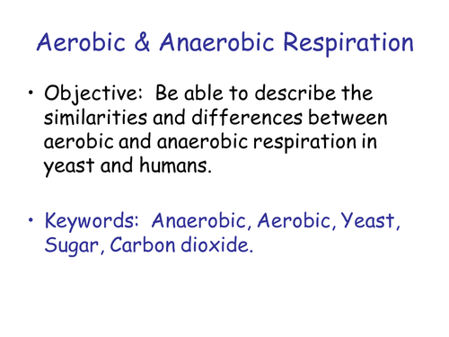 Anaerobic respiration KS3 practical and theory