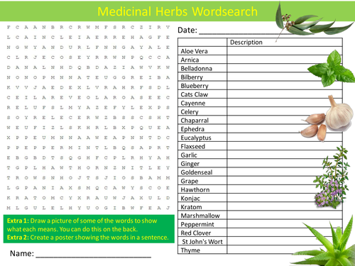 Medicinal Herbs Wordsearch Food Technology Literacy Starter Activity Homework Cover Lesson Plenary