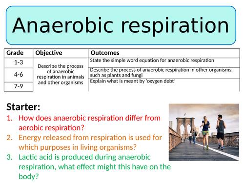 NEW AQA Trilogy GCSE (2016) Biology - Anaerobic Respiration