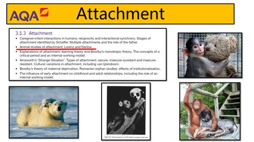 AQA Psychology - Attachment: Animal Studies