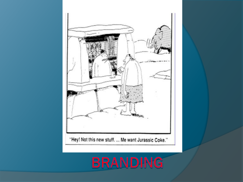 Business Studies – Cambridge IGCSE – Marketing – Unit 16 – The Marketing Mix – Marketing Strategy