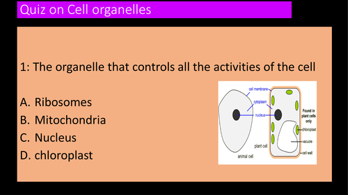 assessmnet or  starter Quizs on plant, animal and bacterial cell