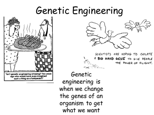 Secondary genetics and evolution resources