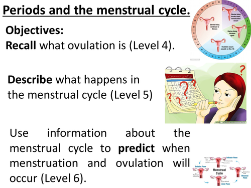 Periods, menstrual cycle, menstruation, ovulation, 28 day cycle. Complete lesson. KS3 Biology.