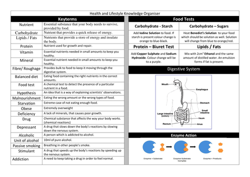 Y8 Health, Lifestyle, Diet and Exercise Knowledge Organiser