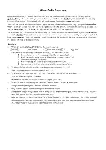 B2.3 & B2.4 Stem cells worksheet including answer sheet