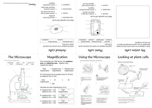 Microscope and cells mini-book for students to complete and personalise