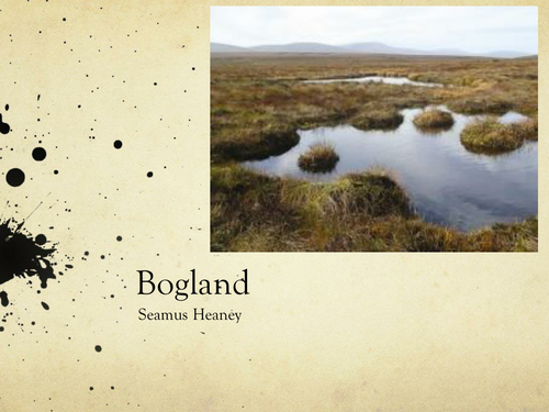 Bogland by Seamus Heaney- Poetry Analysis (CCEA A Level)